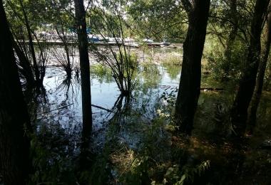 2018 Prace porządkowe - powódź