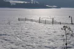 zima_2006_2