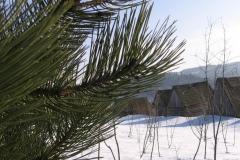 zima_2006_8
