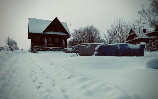 Zimowo na przystani PTŻ